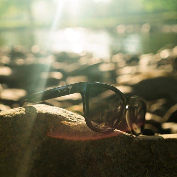 klassisk wayfarer solbriller svart